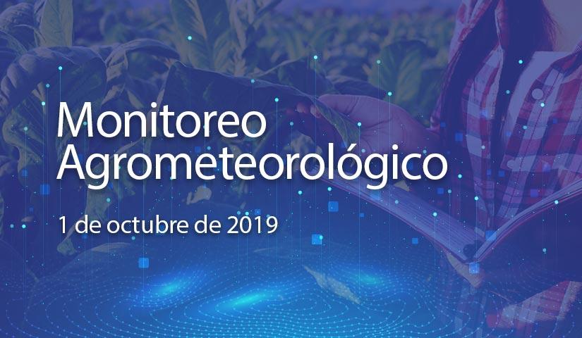 monitoreo 1/octubre/2019