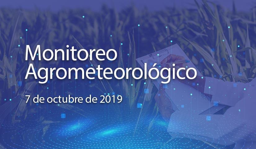 monitoreo 7/octubre/2019