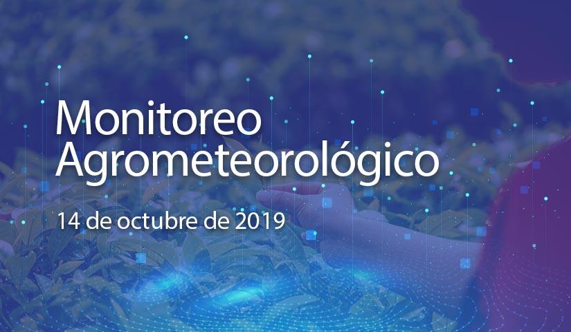 monitoreo 14/octubre/2019