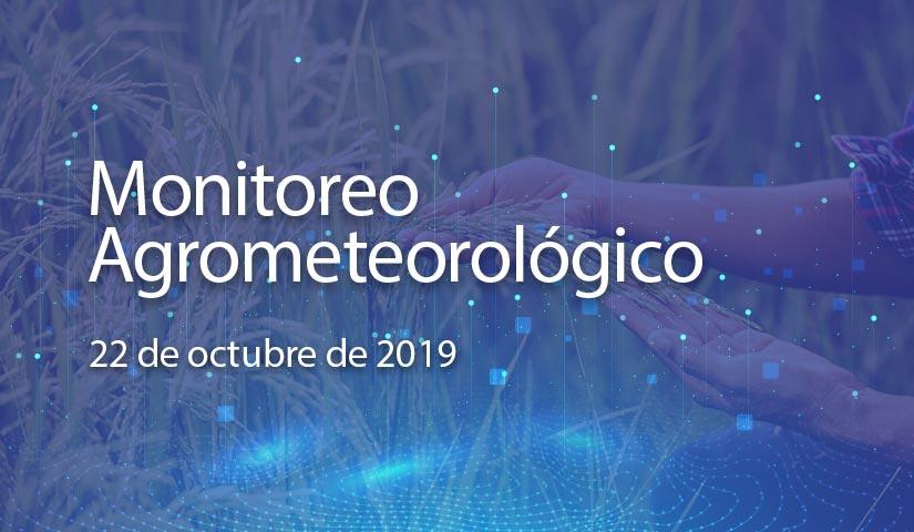 monitoreo 22/octubre/2019